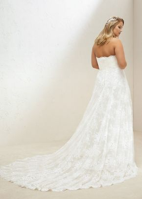 MEG PLUS, Pronovias