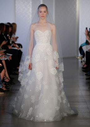Vana, Tony Ward