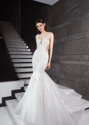 sancia, Tony Ward