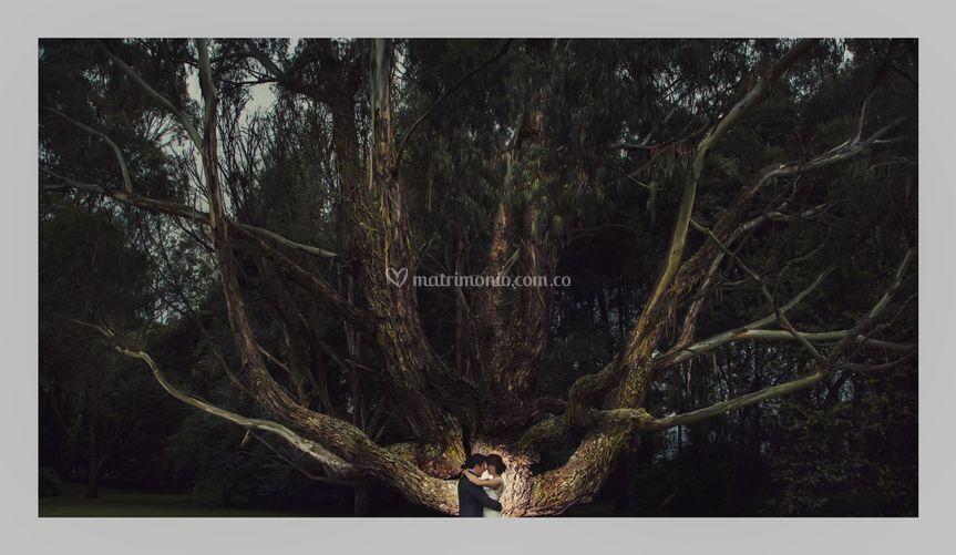 Mauro Cifuentes Photographer