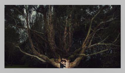 Mauro Cifuentes Photographer 1