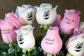Speaking Roses Barranquilla