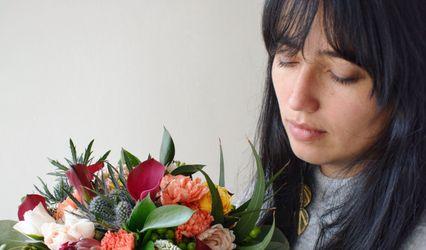 Carmen Florería