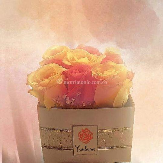 Caja con rosas