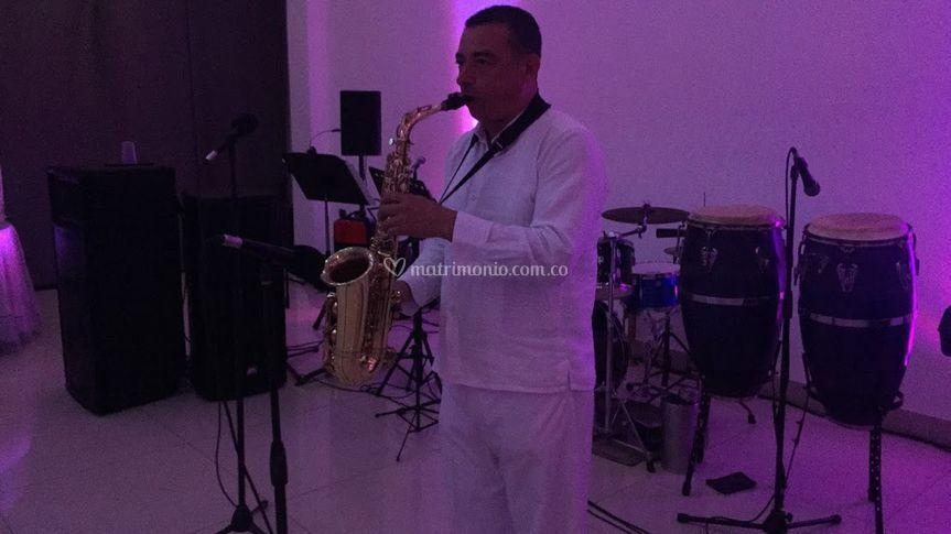 Instrumentos y sonido profesional