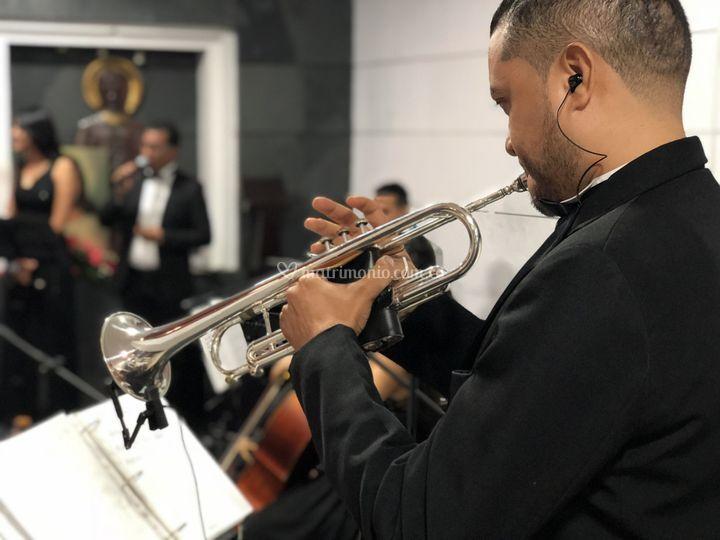 Marcha nupcial con trompeta