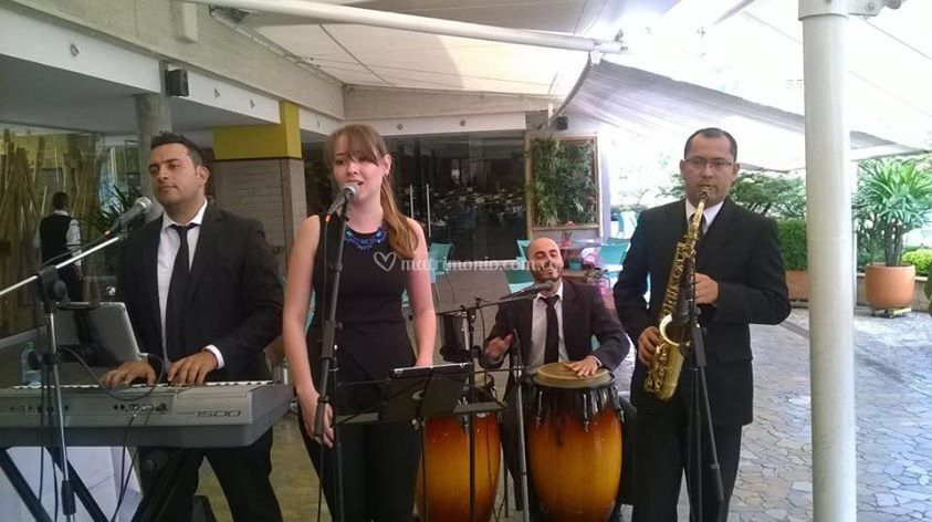 Excelente grupo musical