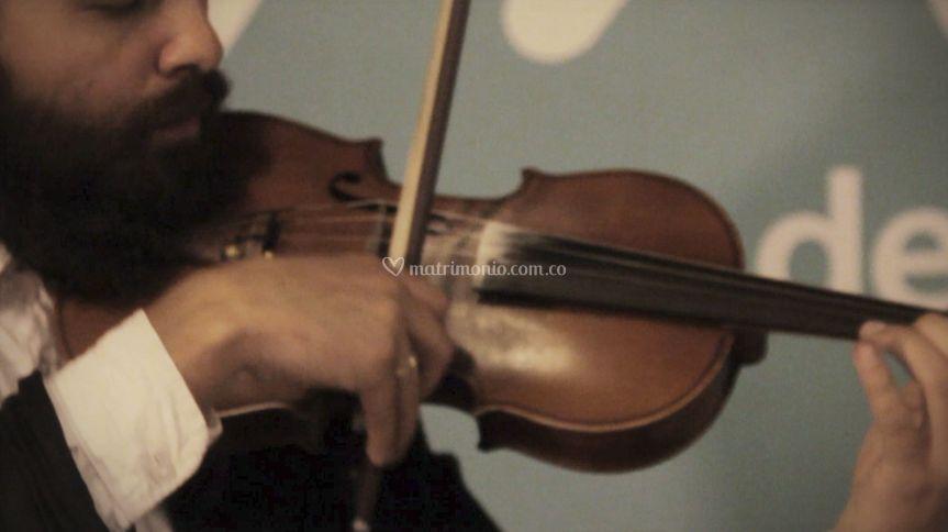 CieloSur - Violinista
