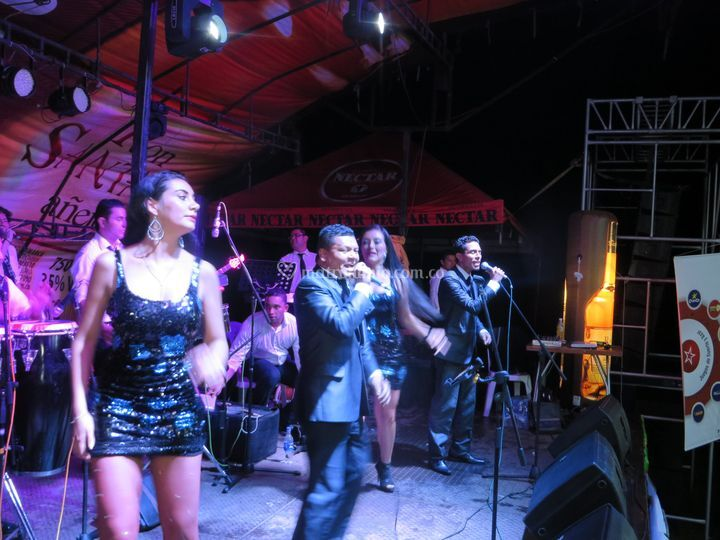 Avalancha Orquesta Show