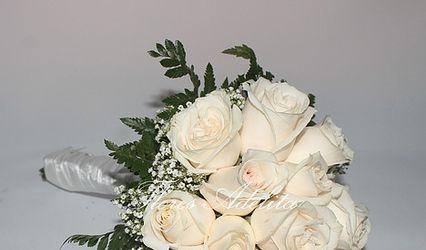 Flores Adelita