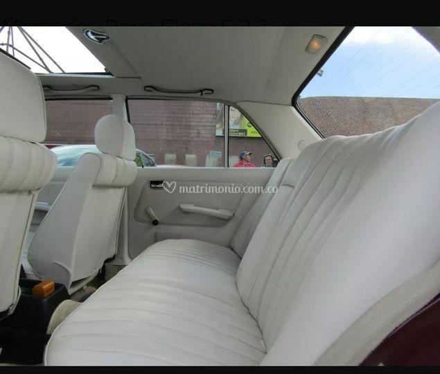 Interior del vehículo pasajero