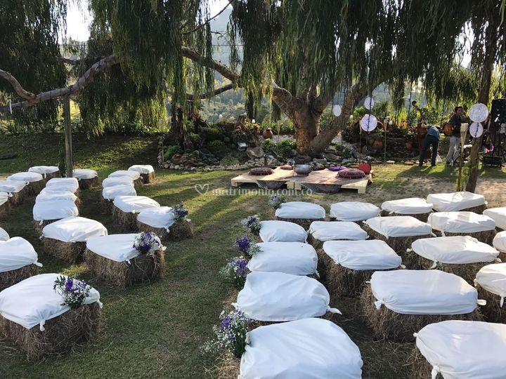 Árbol para ceremonias