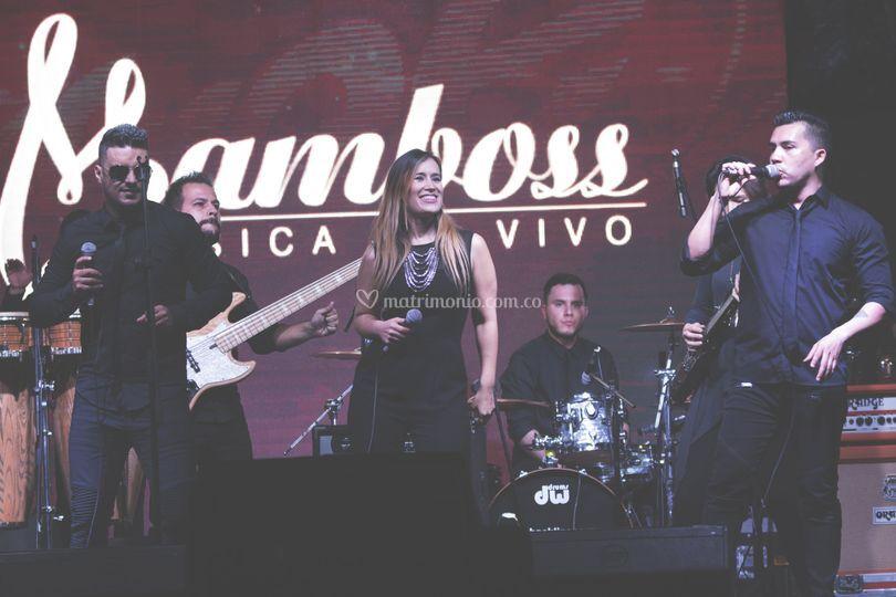 Mamboss