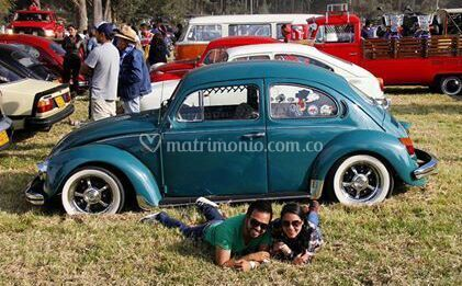 VW 006
