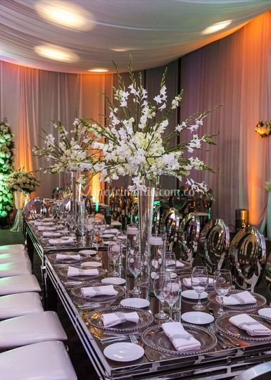 Adriana Franco Wedding Planner