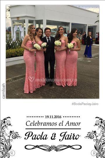 Foto de las Damas de Honor