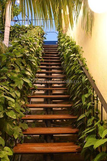 Escalera de la teraza