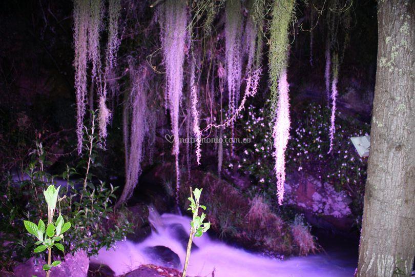 Iluminación nocturna del río