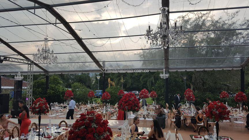 Carpas bodas transparentes