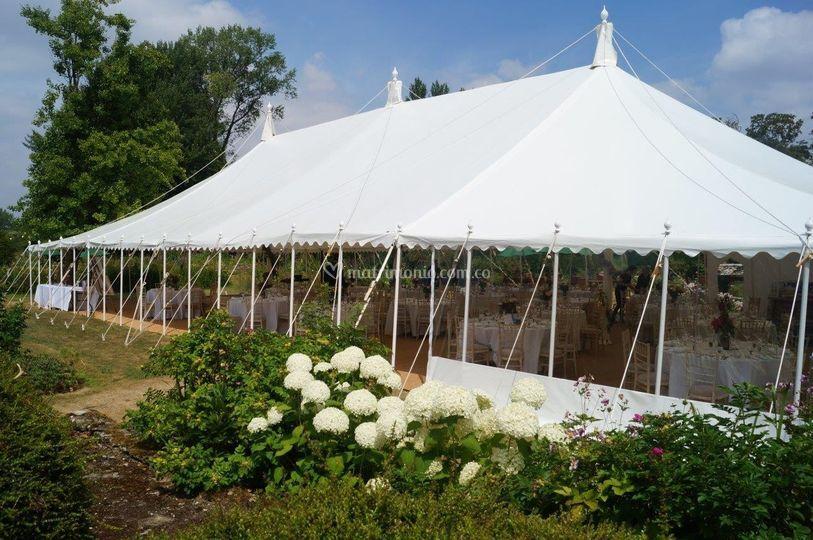 Carpa circo para bodas