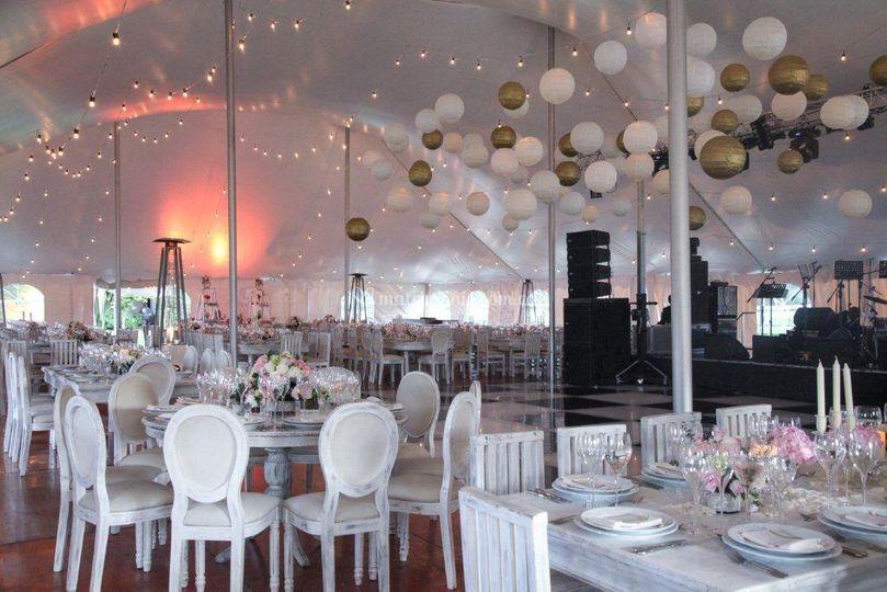 Matrimonio carpa circus