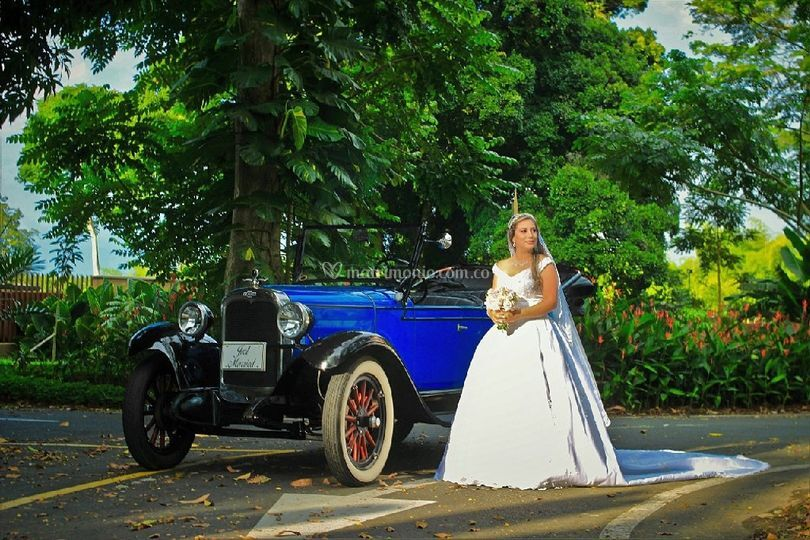 Hermosa novia en jacinto