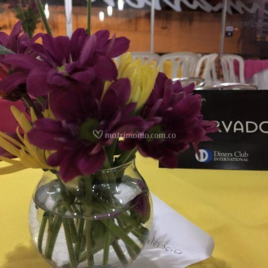 Flores de encanto