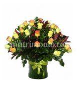 Rosas 4