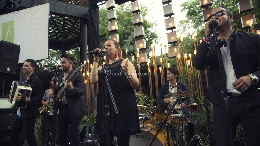 MT Band en vivo