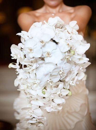 Bouquet de novia en Cascada