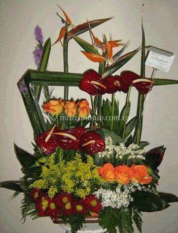 Arreglo flor tropical