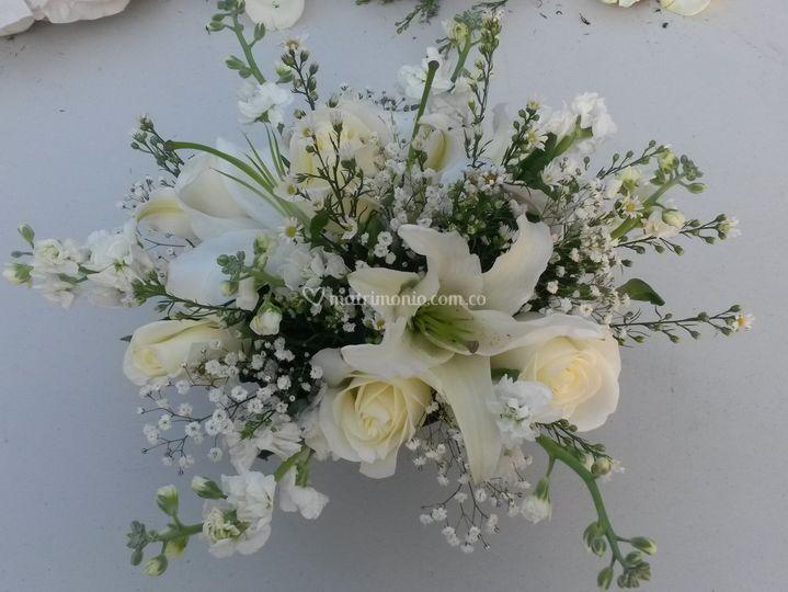 Flores 24 Horas