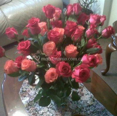 Rosas para decorar