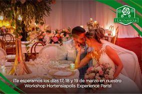 Hortensiapolis