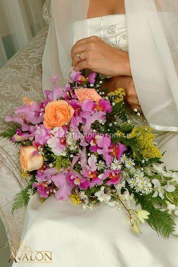 Matrimonios  Calii