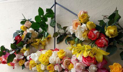 Estudio Floral Karimagua 1