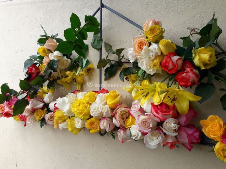Estudio Floral Karimagua