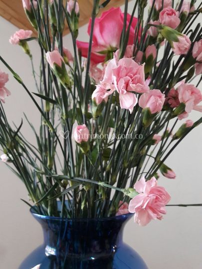 Claveles y muchas flores mas