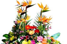 Flora del Norte
