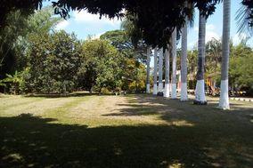 Verde Bambú Campestre Los Guaduales