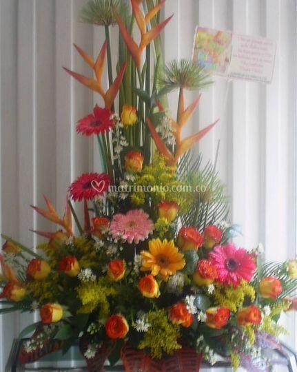 Arrego floral