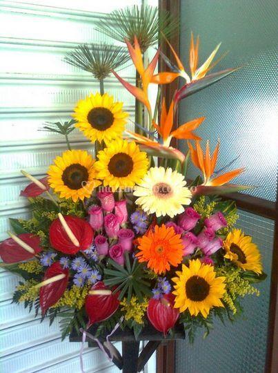 75fd2498363f3 Arreglo de flores tropicales de Floristería Flores y Diseños
