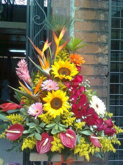 74a91b28de3b7 Ideal para toda ocasión de Floristería Flores y Diseños