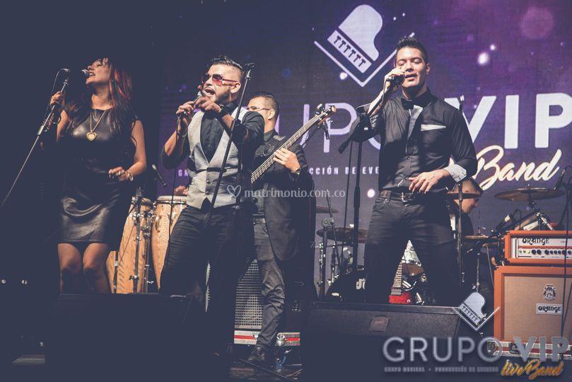 Grupo vip live band