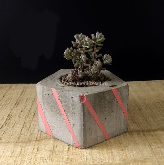 Poliedro - Geometría en Concreto
