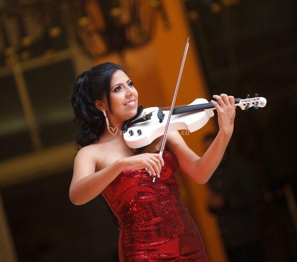 Violinista - cantante