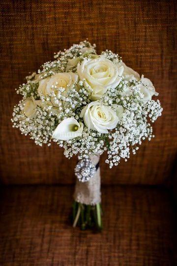Gerbera Flores