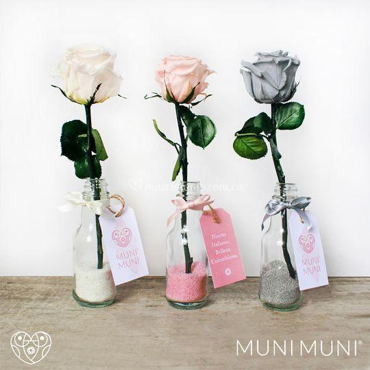 Rosas preservadas en botellas