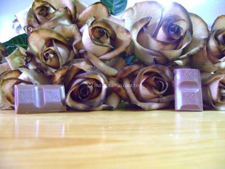 Rosas sepia