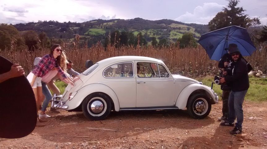 Escarabajo 1966